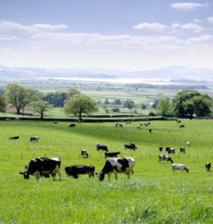 Mortgages and Finance for Starting a Farm