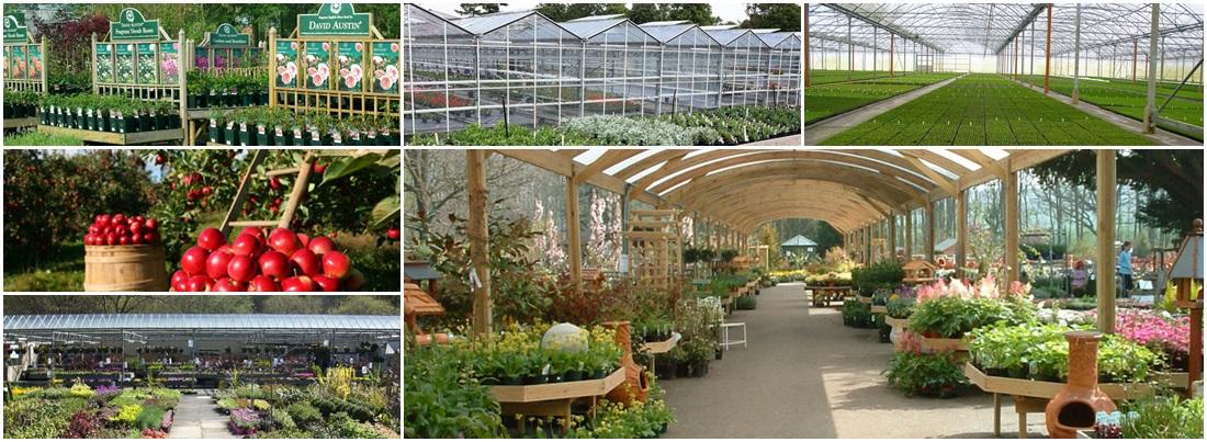 Horticultural finance, loans & mortgages